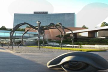 Tour mit zeitgenössischer Kunst in Seoul