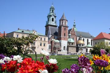 Excursão a pé com pequeno grupo a cidade antiga de Cracóvia...