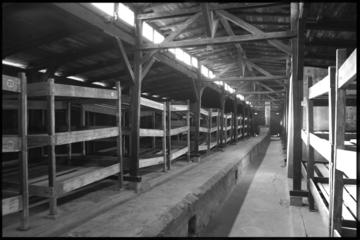 Excursão para Auschwitz-Birkenau...
