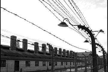 Excursão privada: Excursão a Auschwitz-Birkenau saindo de Cracóvia