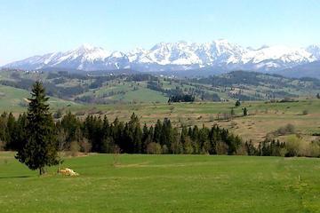 Privétour van een hele dag naar Zakopane en het Tatra-gebergte vanuit ...