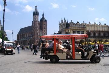 Private Tour: Krakow City Tour by Eco-Vehicle