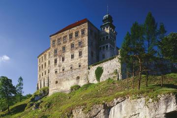 Visite privée: excursion d'une journée dans les châteaux polonais au...