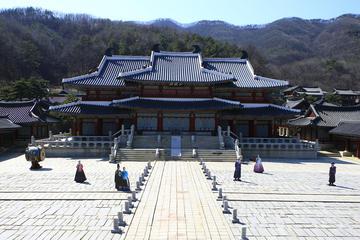韓国文化コンボ:ソウルから行く龍仁のMBCドラ…
