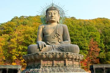 2-tägige Tour nach Seoraksan (Mt Seorak) ab Seoul