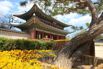 Exklusivt för Viator: Romantisk Bachelor-upplevelse i Seoul