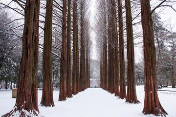 Recorrido del drama de televisión Sonata de invierno en la Isla Nami...
