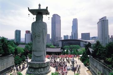 Recorrido en el distrito de Gangnam de Seúl incluyendo el Acuario...