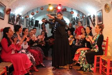 Espectáculo flamenco en el Sacromonte y recorrido a pie del Albaicín