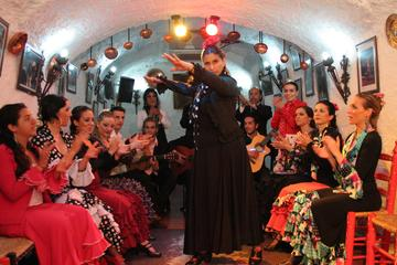 Granada Flamenco Show in Sacromonte and Walking Tour of Albaicin