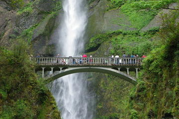 Afternoon 2PM-Half Day Multnomah Falls and Columbia River Gorge...