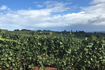 Book Eugene Private Wine Tour on Viator