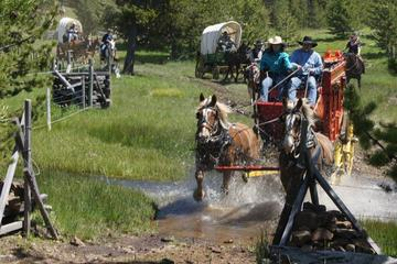 Day Trip Old West Wagon Train Experience! near Pendleton, Oregon