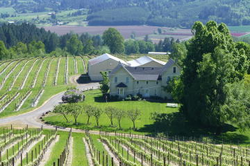 Willamette Valley Wine-Tasting Tour...