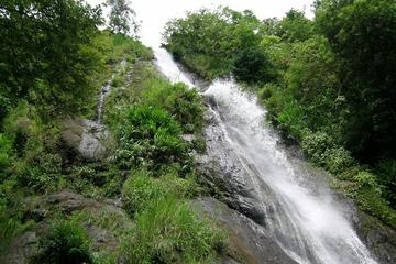 Cool Breeze Waterfall Tour