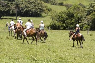 Excursão de oito dias com o melhor do noroeste da Costa Rica partindo...