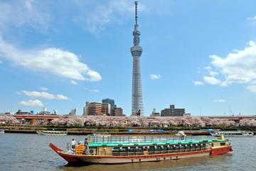 Japanese Style Lunch Cruise by Yakatabune by TOKYO SKYTREE