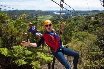 Erkundung von Waiheke Island Zipline - Tagesausflug von Auckland aus