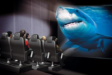Antalya Aquarium and XD Cinema Combo...