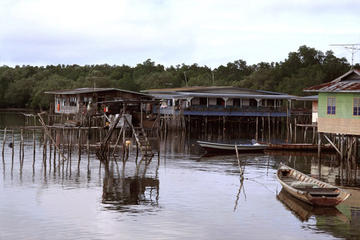 Pulau Ketam Village Tour from Kuala...