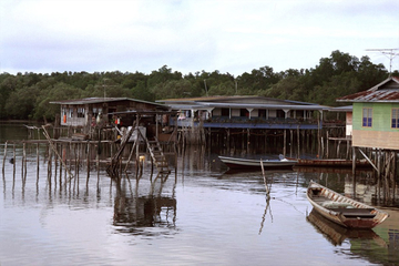 Visita al pueblo de Pulau Ketam desde...