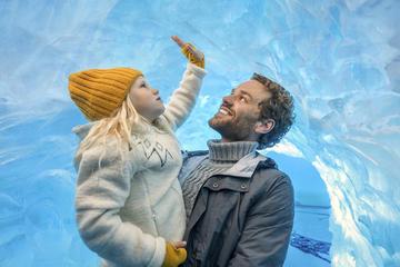 Perlan Museum: Glacier and Ice Cave Exhibition Ticket