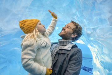 Perlan Museum: Glaciers and Ice Cave Exhibition Ticket