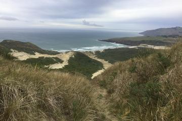Dunedin, Otago Peninsula and Coastal Train trip tour