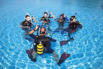 Sydney Open Water Diver Course