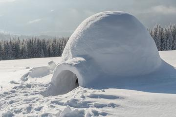 Rovaniemi Northern Lights, Igloo