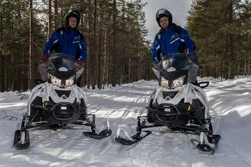 Snowmobile Safari to Reindeer and Husky Farms from Rovaniemi