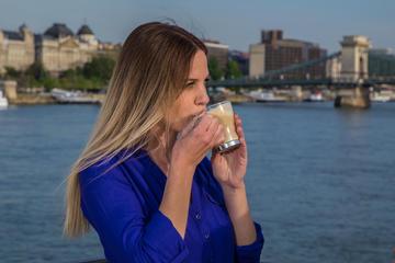 Cruzeiro turístico por Budapeste com café e traslado de cortesia