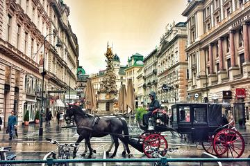 Private Vienna Sightseeing tour from Budapest