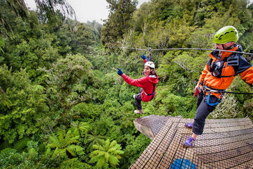 Aventure en tyrolienne dans la canopée de la forêt de Rotorua
