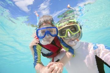 Riviera Maya Combo: Chichen Itza Tour plus Zipline and Snorkel Adventure