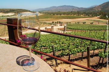 Valle de Santo Tomás Wine Tasting