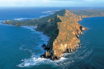 Cape Point und Boulder's Beach Pinguine ab Kapstadt