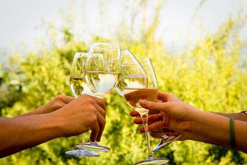 Franschhoek and Stellenbosch Wine Tour from Cape Town