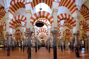 Cordoba Highlights: Guided Day Tour...