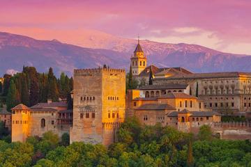 Gita di un giorno a Granada da Malaga