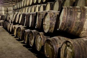 Recorrido vinícola en Oporto