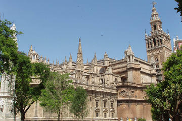Seville Guided Tour into Alcazar and...