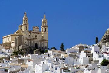 Tour guidato di Ronda e dei villaggi bianchi da Siviglia
