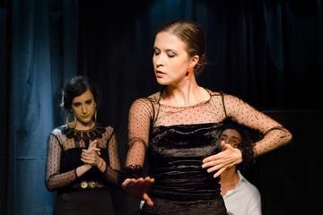 Visite flamenco de 2heures, spectacle et atelier