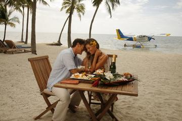Mit dem Wasserflugzeug Flug von Miami mit Mittagessen zu den Florida...