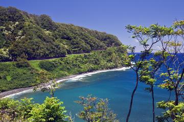 オアフ島発マウイ島日帰り旅行:ハナへの道の体験…