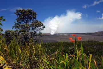 オアフ発ハワイの火山を訪れるエコ体験日帰り旅行