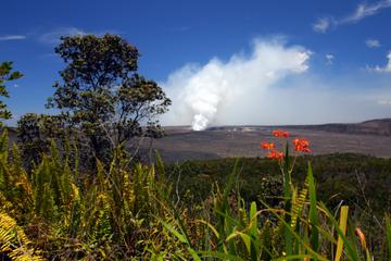 Écoaventure d'une journée aux volcans hawaïens au départ d'Oahu