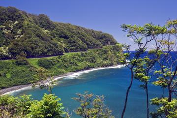 Excursion d'une journée à Maui au...