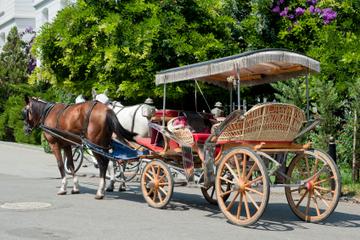 Excursão às ilhas dos Príncipes partindo de Istambul: Büyükada